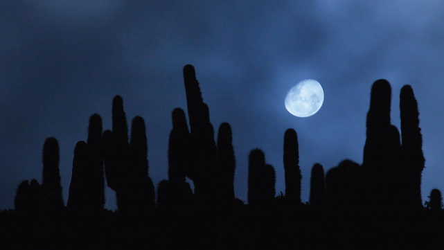 Full Moon in the Quebrada de Humahuaca, Jujuy, Argintina